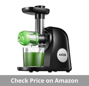 best juicer for 2021
